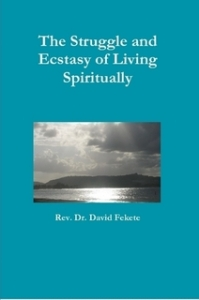 The Struggle and Ecstasy of Spiritual Living by David Fekete